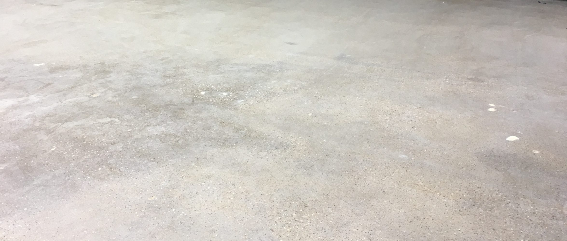 A - Honing Polished Concrete2